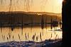 By the water (pelnit) Tags: pelnit norge norway fetsund fetsundlenser vann water snø snow nature natur akershus