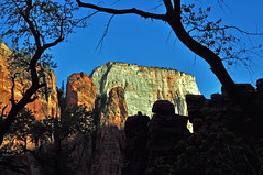 Zion National Park-Utah. (Wheatking2011) Tags: zion national park utah the narrows white dome rock
