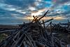 Driftwood Sunburst (dennisjohnston17) Tags: driftwood ocean cambria california waves clouds sunset sunburst
