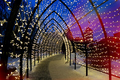 Inside the Light Tunnel (Garry9600) Tags: lumix fz200 winnipeg manitoba canada cans2s theforks outdoor lights night winter path