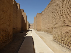 Western Wall lower Ishtar Gate, Babylon (1).jpg (tobeytravels) Tags: iraq babylon babel mesopotamia akkadian amorite hammurabi assyrian neobabylonian hanginggardens achaemenid seleucid parthian roman sassanid alexanderthegreat nebuchadnezzar sargon chaldean hittites sennacherib xerxes