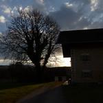 Nachmittagslicht 003 thumbnail