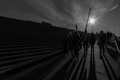Shadows and light! (Milad DG) Tags: shadows light shadowsandlight stairs stairway landungsbrücken hamburg hh germany deutschland street sun sunburst