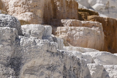 Mammoth Hot Springs_T3W0575 (Alfred J. Lockwood Photography) Tags: alfredjlockwood nature landscape abstract mammothhotsprings yellowstonenationalpark texture color shapes morning summer wyoming travertine