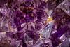 Amethyst (dietmar-schwanitz) Tags: amethyst quarz mineral mineralien steine violett violet purple lila farbe color colour marumi manfrotto sirui makro macro heliconfocus focusstacking dörr lightroom dietmarschwanitz nikonafsmicronikkor105mmf28ged