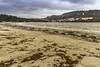 0004-2018-BR (elfer) Tags: paisaje playa arena algas invierno cabañas coruña españa
