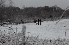 """""""Oh isn't it cold today?"""".. (music_man800) Tags: snow day snowing snowy winter white weather adverse extreme woods field hedge fence ground precipitation ice cold chilly december uk united kingdom essex rural dog walk family people pet perspective canon 700d gimp gimp2 edit nature natural light morning outdoors coat hayt hat oh isnt it today uksnow 2017"""
