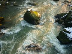 Stromschnellen (Jörg Paul Kaspari) Tags: irrel irrelerwasserfälle dieprüm fliesgewässer bach river eifel südeifel naturpark stromschnellen fels felsen natur nature