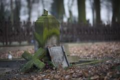 forgotten (jkatanowski) Tags: grave graveyard cemetery outdoor lost forgotten sony a7m2 samyang 85mm broken