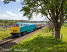 20170518-IMG_7923 (deltic21) Tags: severnvalley severn british brblue britishrail preservation preserved rail railway hydraulic western class canon maybach class52 1062 d1062 courier shed depot wizzo valley train track tracks trains sun sunny blue sky gala diesel classic heritage