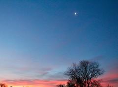Transition (JacquieD.) Tags: sunrise gradient pink purple blue moon sky transition beautifulviews goodmorning tree colorado colorfulcolorado