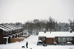 Out for a walk (razorlitexx) Tags: snow man dog landscape dipton winter white village