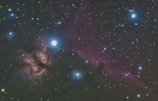 Flame and Horsehead Nebulas in Orion