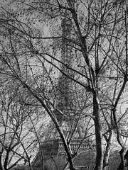 La Tour Eiffel (Vineyards) Tags: eiffeltower paris tour eiffel parijs winter