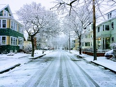 First Snowfall (El Alcalde de l'Antartida) Tags: winter cold white season snowfall snowing december street boston newengland massachusetts arlington suburbs houses seasonal weather neve inverno fall freddo nevicata strada bianco alberi stagione lgcameraphone lg nexus