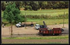 11/12 Karnin Gorzowski (dloc567) Tags: modelleisenbahn modelspoor modelspoordagen rijswijk broodfabriek karningorzowski pmmh0 h0 187 polen poland polska makieta