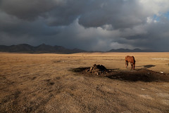 It Was Dark And Stormy (peterkelly) Tags: kyrgyzstan songkol songkul mountains mountain ridge storm clouds cloudy horse plain meadow evening dusk sunlit dark digital canon 6d asia gadventures centralasiaadventurealmatytotashkent
