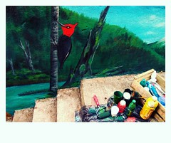 El loco (Felipe Smides) Tags: mural muralismo smides pájaro carpintero bosque