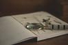 Étude... (l'imagerie poétique) Tags: limageriepoétique poeticimagery stilllife naturemorte loupe magnifyingglass pressedflowers fleurspressées journal 50mm