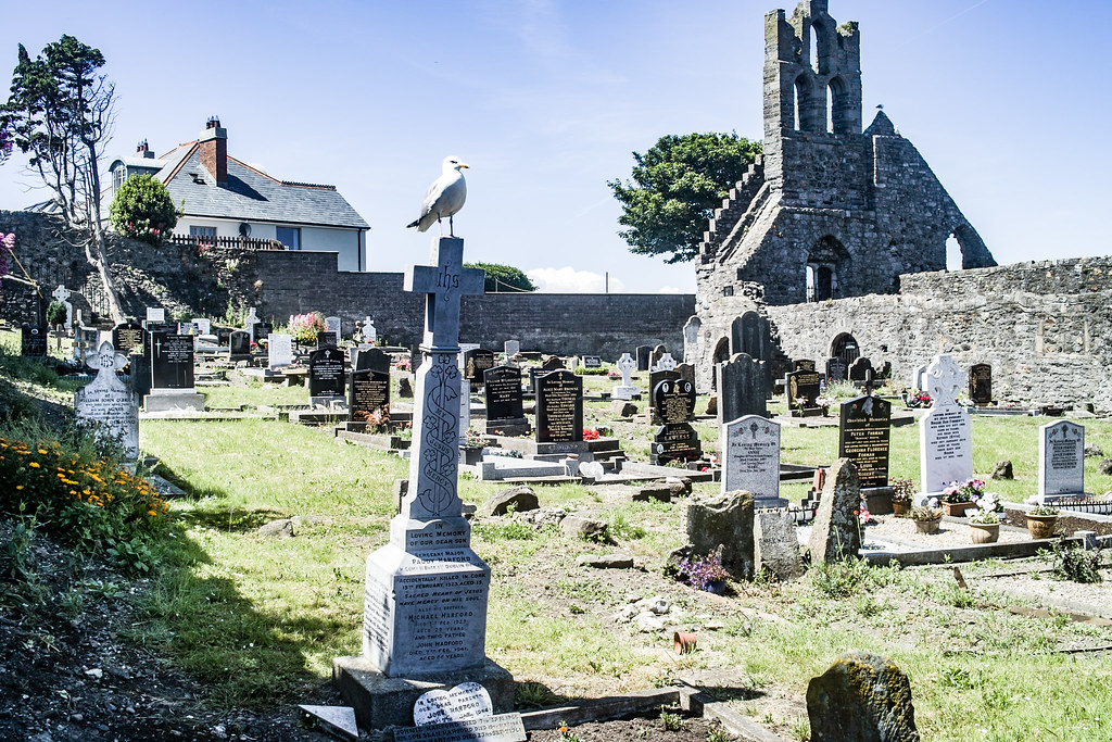 BACK IN JANUARY 2009 I VISITED THE OLD GRAVEYARD IN HOWTH [I HAD TO LEAVE BECAUSE I WAS ATTACKED BY GULLS]-135897