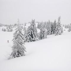 P1020425.jpg (MJFear) Tags: alpine chamonix holiday leshouches montblanc skiing snowsports france snow winter