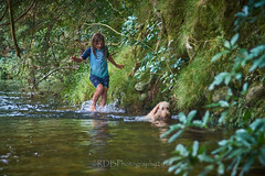 Visit to the MC family 01 (C & R Driver-Burgess) Tags: preteen young boys brothers friends play swim splash dog curly long blonde hair three mum dad mother father husband wife couple family stream river running rocks forest bush ferns trees green beautiful peaceful summer