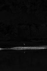 Cougourde-0135 (Christophe La Rocca) Tags: noiretblanc nature outdoor light paysage dark black lumière lac bnw noir angoisse blanc abandon solitude sauvage sombre