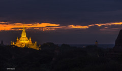 Pre-dawn view of Buddhist temples - Old Bagan, Myanmar (Phil Marion) Tags: myanmar burmese asian oriental buddhist philmarion candid woman girl boy teen 裸 schlampe 나체상 벌거 desnudo chubby nackt nu ヌード nudo khỏa 性感的 malibog セクシー 婚禮 hijab nijab telanjang nude slim plump tranny sex slut nipples ass boobs tits upskirt naked sexy bondage fuck tattoo fetish erotic cameltoe feet cock desi japanese african khoathân latina khỏathân beach public swinger cosplay gay wife dick milf crossdress ladyboy babe