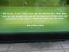 Barney's Window (Clara Ungaretti) Tags: green typo typography graphic graphicdesign design reflections reflection window inspiration manhattan newyork newyorkcity novayork estadosunidosdaamérica estadosunidos unitedstatesofamerica unitedstates us usa nyc