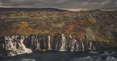 Hraunfossar (►►M J Turner Photography ◄◄) Tags: hraunfossar iceland waterfalls waterfall cascade cascades autumn