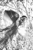 Mehrfachbelichtung B/W (Bugtris) Tags: wald 2470f4l portrait fog bw 5dmkiii nebel mehrfachbelichtung