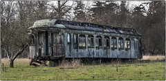 Unloved Railcar (NoJuan) Tags: railcar railroad abandoned washingtonstate neglected penf vario45200mm 45200mmpanasonicvario microfourthirds micro43 clerestorycoachusstock groundedbody