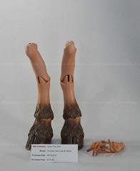 Soom The Gem Coquina Yami Parts (✦Dedeko✦) Tags: balljointed doll resin bjd soom gem female coquina bronze yami hooves legs parts hands hoof sd super