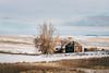 Journey Through The Past (Pedalhead'71) Tags: lincolncounty washington abandoned house farm homestead desert winter snow
