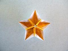 Carambola variation - Ekaterina Lukasheva (Rui.Roda) Tags: origami papiroflexia papierfalten modular flor fleur flower carambola ekaterina lukasheva