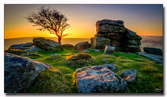 Holwell Tor Sunset (jeremy willcocks) Tags: holwelltorsunset dartmoor devon ukjeremywillcocksc2018fujixpro2xf1024mm colour landscape tree sunstar sunset moor moors rocks tor sunlight sky wwwsouthwestscenesmeuk