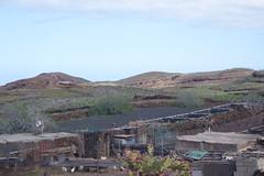 Farming (koukat) Tags: lanzarote cactus garden cesar manrique jardin islas canarias canary islands quarry windmill