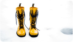 The Dr Marten Shower wellington boot, yellow. (CWhatPhotos) Tags: white out winter cold weather extreme freeze county durham north england uk olympus prime lens light photographs photograph pics pictures pic picture image images foto fotos photography that have which with contain mk digital camera product micro four thirds 43rds 43 mirrorless pen epl8 panasonic lumix g 20mm g20mm womens dr martens marten shower welly wellington boot yellow rubber docs doc cwhatphotos