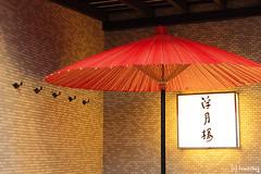 徳川慶喜 画像16
