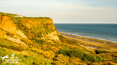 Sand Cliffs over Yaverland Beach (SLHPhotography1990) Tags: 2017 april sandown sony sophs culver downs walk isleofwight isle wight area natural beauty outstanding country countryside rural landscape yaverland beach sea water cliffs sand heath gause gauze