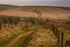 _DSC0053 - Lancashire moorland on a cold, dull day...- (SWJuk) Tags: swjuk uk unitedkingdom gb britain england lancashire burnley crownpoint dunnockshawcommunitywoodland moors moorland fence path footpath trail gate hills hillside 2018 jan2018 winter grasses nikon d7100 nikond7100 18300mm rawnef lightroomclassiccc
