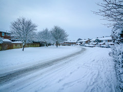 Snow in Gamlingay and Cambridge 2010 - 1000282.jpg