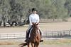 krista9 (allymadesomething) Tags: krista horse show horses ponies parrish oaks farm barn simba thoroughbred