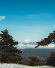 A mountain in Greece (sotirisdimi) Tags: parnitha greece snow mountain deer mushroom