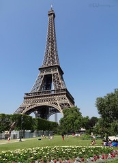 Open grass areas by Eiffel Tower