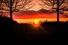 Framed sunset (Maria Eklind) Tags: ribersborg sunset himmel spegling sweden outdoor light ribban silhouette tree sky solnedgång sunlight öresundsbron silhuett malmö winter skånelän sverige se