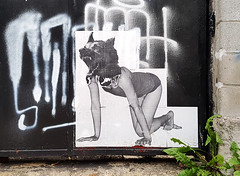 Alleyway Dog Lady (Coastal Elite) Tags: wheatpaste poster dog mask head woman crawling hands knees streetart mileend montreal wheatpasting barefoot skirt feet masque chien hound doggie doggy wheat paste pasting pasted paper door ruelle alley alleyway montréal mile end ruelles alleys alleyways femme girl papier wolf lady howling bw graffiti urban street art urbain