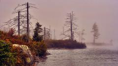 fog-2007-XTi-09-22-41