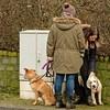 Haarspalterei (Gerd Trynka-Ottosohn) Tags: ottosohnfoto germany hund mensch pelz fell kraulen gassi skin fondle dogs