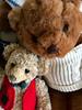 Bear Hugs! (BKHagar *Kim*) Tags: bkhagar htbt bear teddy teddybear hugs animal animals sweater vest toy stuffed soft
